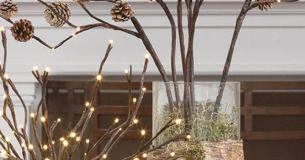 Lighted branches in vases (with pine cones)- beautiful Christmas decor!