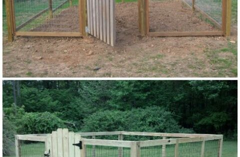 Raised bed with deer fence deer proof vegetable garden ideas 6 deer proof vegetable garden - Deer proof vegetable garden ideas ...