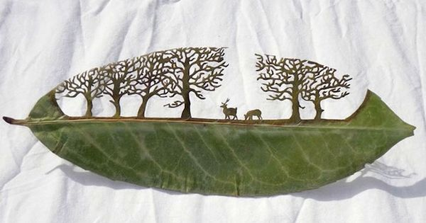Incredible Leaf Carving Art by Lorenzo Duran from Spain