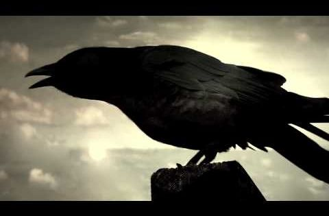 The Raven A Song By The Alan Parsons Project From Their Album