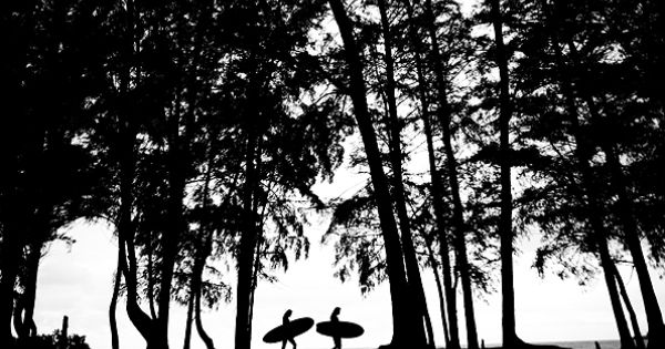Surfers' Silhouette