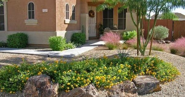 cheap backyard desert landscaping ideas http
