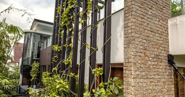 Climbing plant balustrade google search roof deck pinterest roof deck architecture and - Pergola climbing plants under natures roof ...