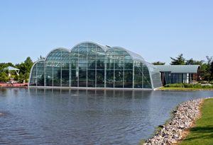 9151cfcaf67a9393e1ecd2499d67f8f8 - St Louis Botanical Gardens Butterfly House