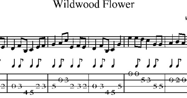Mandolin Tab u0026 Sheet Music - Wildwood Flower : MANDOLu00cdNA/MANDOLIN : Pinterest : Sheet music ...