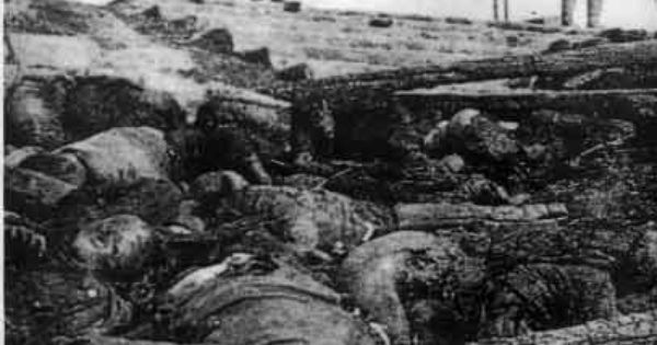 the rape of nanking essay Toshio tamogami won the contest with his essay was japan an  party who  claimed the death toll in the rape of nanking massacre, one of.
