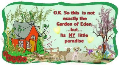 Garden Sign Sayings Funny Quotes Whimsical Sayings Funny Garden Signs Garden Signs Garden Quotes