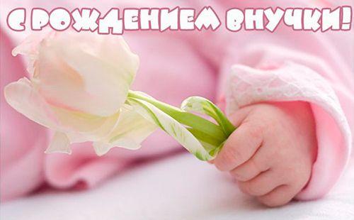otkritka-pozdravlenie-babushke-s-dnem-rozhdeniya-vnuchki foto 10