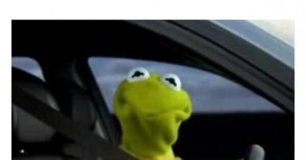 15 Funny Kermit The Frog Memes
