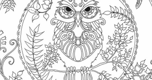 Enchanted Forest Owl Coloring pages colouring adult ...
