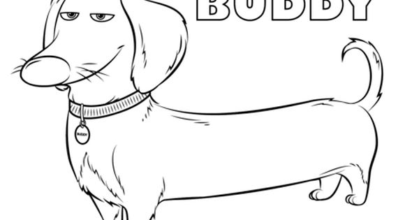 Buddy From The Secret Life Of Pets Coloring Page Dog Coloring Book Dog Coloring Page Secret Life Of Pets