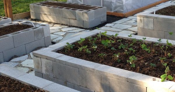 Our Garden 8 Foot Deer Fence Cinder Block Raised Bed