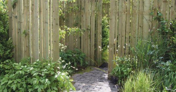 Jardin pare vue et brise vent choisir pare vue arbuste et les plantes for Choisir plantes jardin