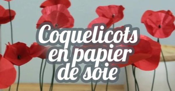 tuto coquelicots en papier de soie diy lovely flowers with silk paper deco pinterest. Black Bedroom Furniture Sets. Home Design Ideas