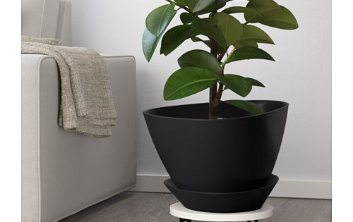 Ikea Us Furniture And Home Furnishings Ikea Plants Indoor Plant Pots Indoor Plants Diy