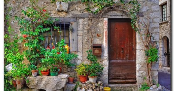 A very rustic little stone house, with a great vine over the