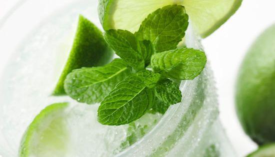 Nojoito by skinnytaste: 58.5 calories per servingl. Mojito Nojito skinnytaste