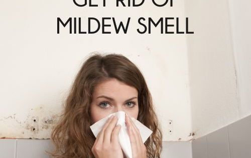 10 cheap ways to get rid of that awful mildew smell fragrance home