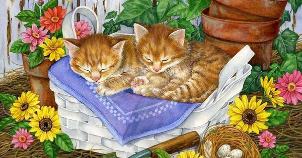 Levkonoe jane maday g 3 pinterest gato for Alejar gatos del jardin