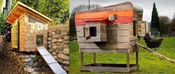 Avoir des poules dans son jardin poulailler pinterest for Avoir une poule dans son jardin