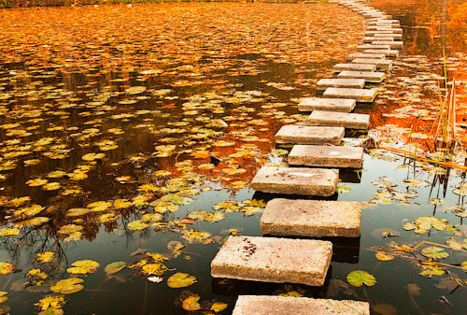Autumn Walkway, Poland. Lake walk stepping stones bridge autumn leaves