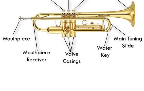 Diagram of the parts of the trumpet. #vocabulary #diagram ...