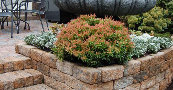 Verhoogde border afsluiting terras tuin ontwerp bestrating pinterest - Hek begroeide ...