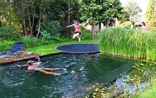 Pool disguised as pond with in ground trampoline in place of a