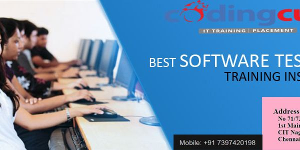 Codingcub Provides The Best Software Testing Training In Chennai