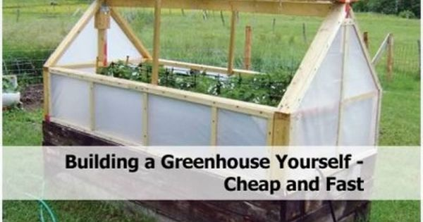 17 Best 1000 images about Homesteading and Gardening on Pinterest