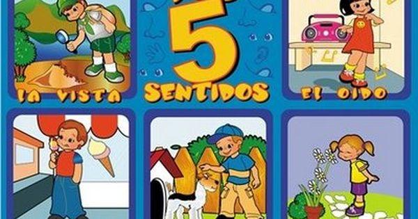 Laminas Educativas Los 5 Sentidos Los Cinco Sentidos En Preescolar El Cuerpo Humano Infantil Estrategias De Enseñanza