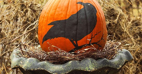 40 Creative DIY Pumpkin Designs. These are FUN!! How would you're child