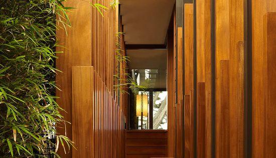 modern exterior design ideas entry wood bamboo trees