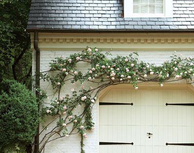 .driveway details, updated garage doors and hanging vines