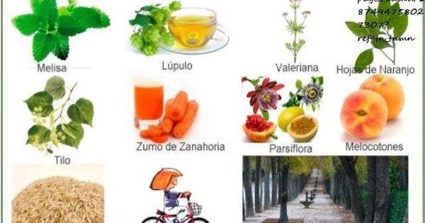 Remedios naturales para la andiedad cuerpo sano con la madre