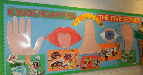 Five Senses Bulletin Board