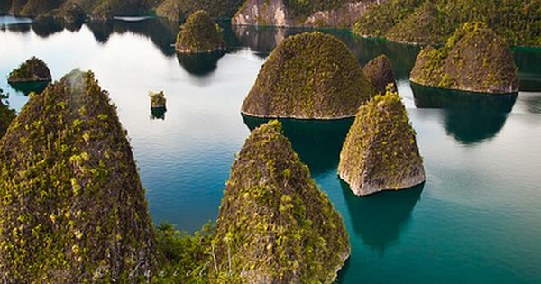 Natural Wonders: The Raja Ampat Islands in Papua, Indonesia are home to