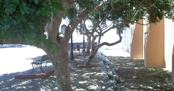 memorial day en puerto rico