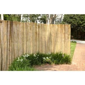 6 Ft X 6 Ft Peeled And Polished Reed Fence Bamboo Garden