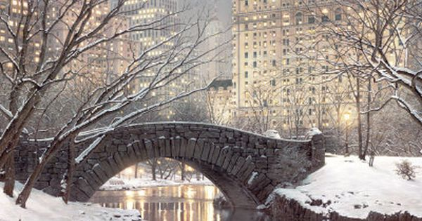 Central Park, NY at Christmas time - a winter wonderland to an
