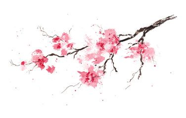 Cherry Blossom 3 By Rachel Dutton I Like To Paint Cherry