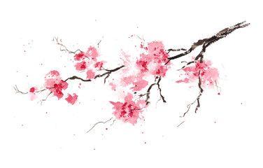 Sakura Branch Original Watercolor Painting Cherry Blossom Art