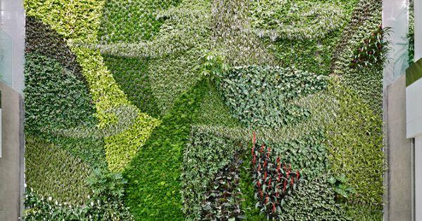 Un muro verde para el aeropuerto de edmonton esta pared for Plantas usadas para jardines verticales