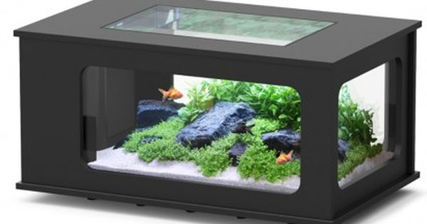 aquarium table pas cher aquatable pas