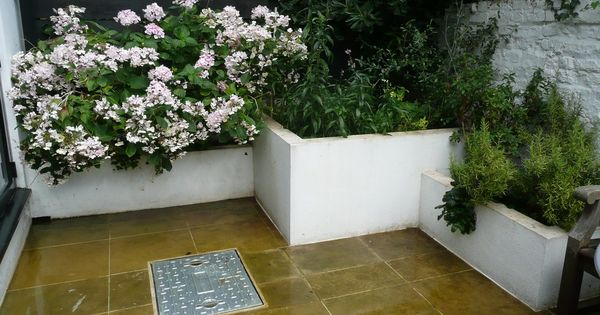 Blossom shady courtyard garden courtyards pinterest for Small shady courtyard ideas
