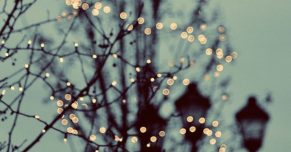 Winter Lights 8x8 Photograph christmas lights holiday by ellemoss, $30.00