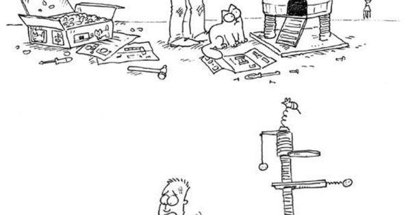 Simon's cat и отношението на котките към специалните играчки и простите кутии
