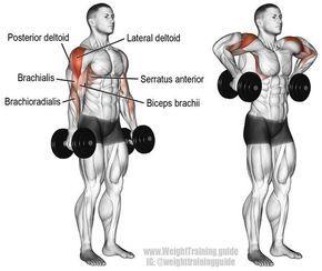 Deltoide exercicios