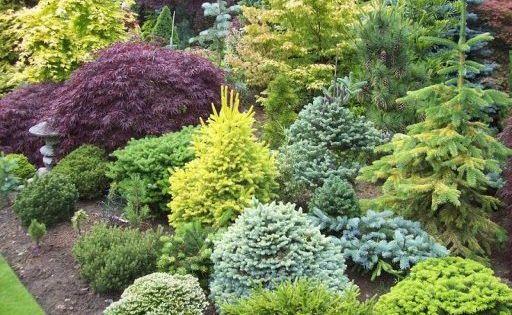 Im genes espectaculares de jardines exuberantes for Jardin 7 colores bernal