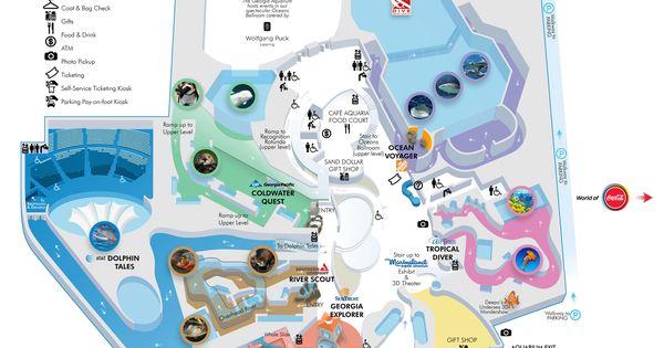 Georgia Aquarium The Aquarium 39 S Notable Specimens Include
